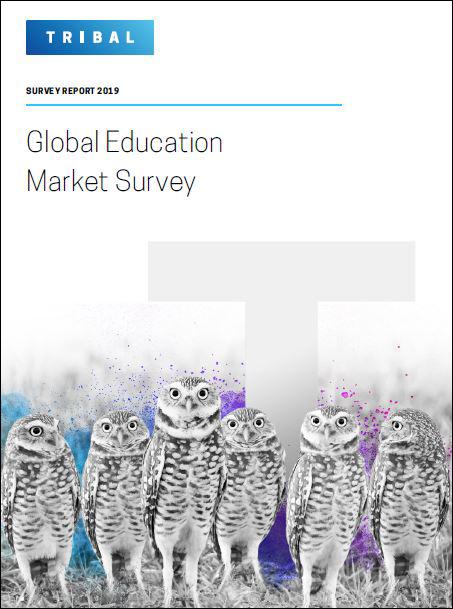 market survey report